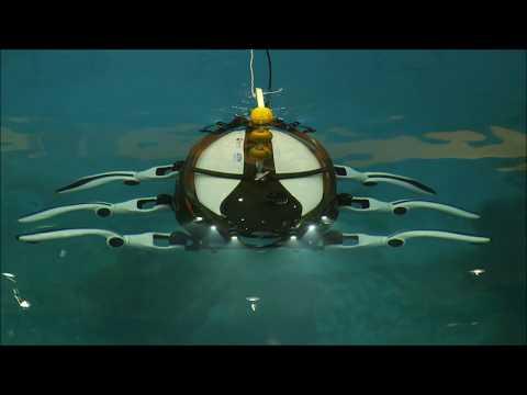 Crabster CR6000 Tank Test