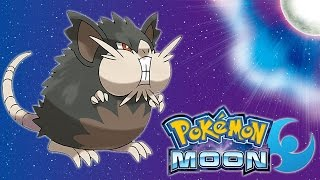 Pokemon: Moon - Chubby Raticate - Totom Pokemon