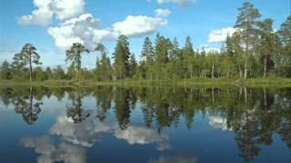 Фильм   Над Вяткой над рекой