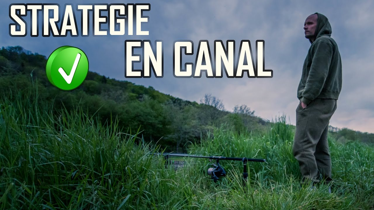 TECHNIQUE DE PÊCHE A LA CARPE EN CANAL - Carpfishing