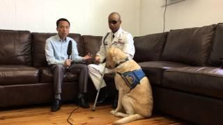 Chú chó 50.000 đô la của Đại uý James Văn Thạch - BBC News Tiếng Việt