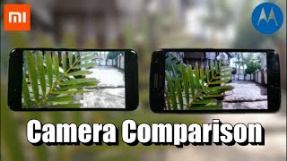 Xiaomi Mi A1 vs Moto G5 Plus Camera Comparison