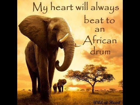 My heart will always beat to an African drum