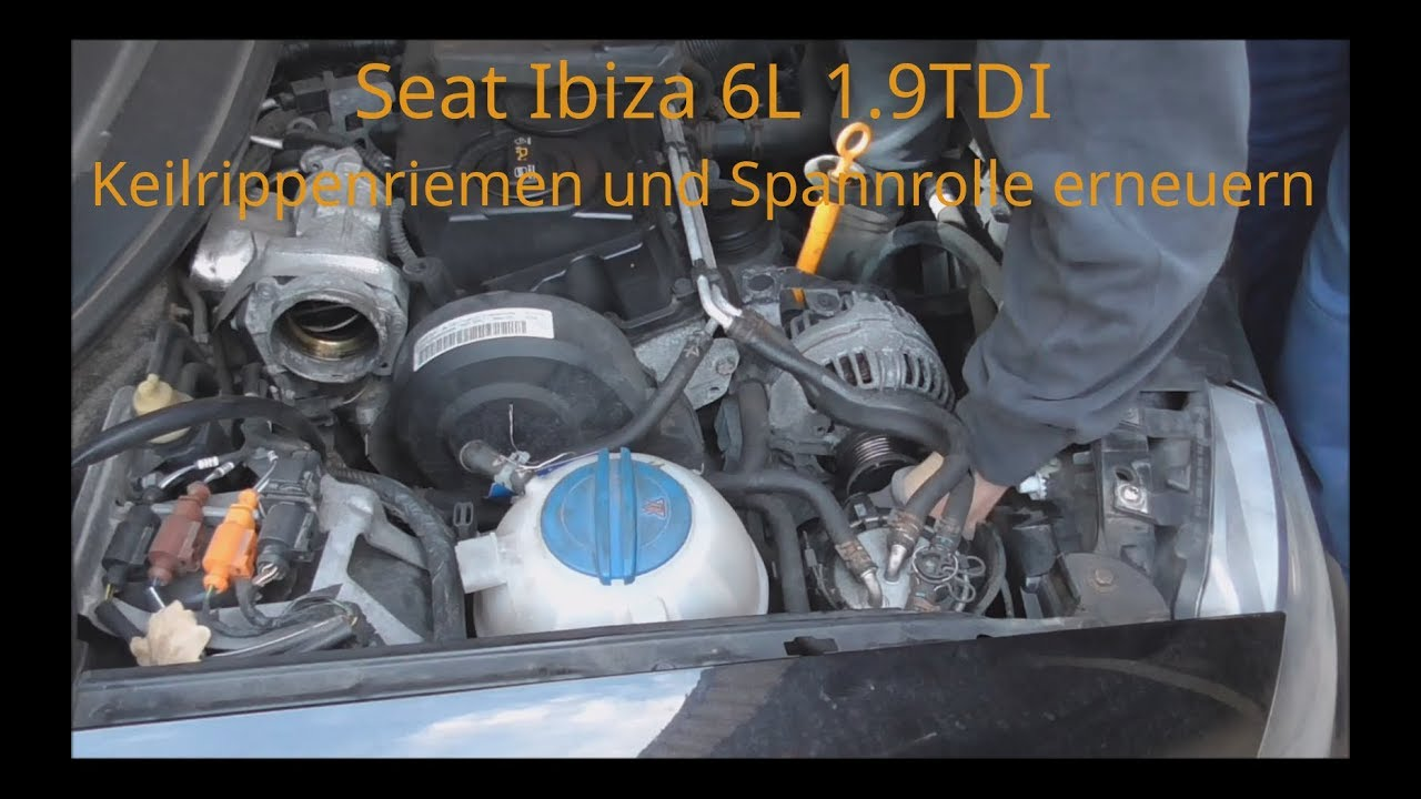 seat ibiza 6l 1 9 tdi keilrippenriemen und spannrolle. Black Bedroom Furniture Sets. Home Design Ideas