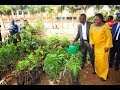 NWSC/Y.W.Ps LAUNCHES 1 MILLION TREE CAMPAIGN.