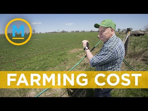 Is Canadian Farmland Getting Too Expensive?| Your Morning