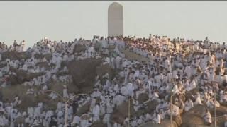 Prières sur le Mont Arafat, moment fort du hajj