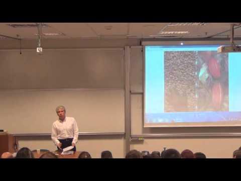Koç Üniversitesi UNIV 101 - Mehmet Sarıdereli - Çikoloji