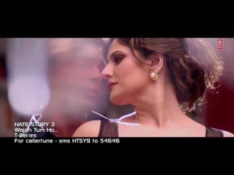 Wajah Tum Ho Full Video Song   Hate Story...