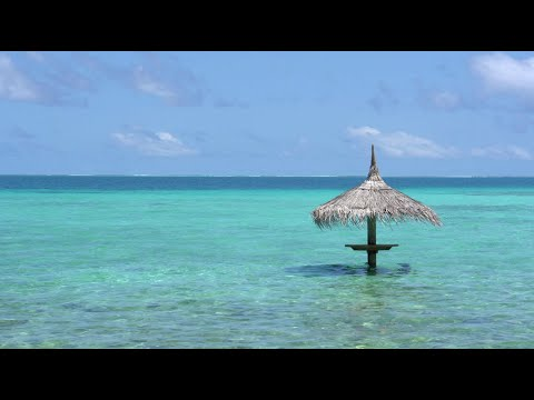 Top Five Travel Tips for Cancun and the Riviera Maya