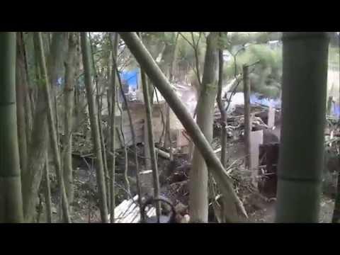 東京シカクイ2015年03月07日戦国定例会01