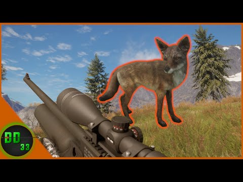 Coyote Hunting with The AIR RIFLE! Call Of The Wild