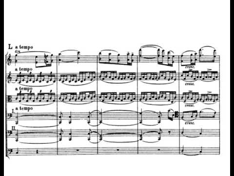 Edward Elgar - Serenade for Strings Op.20 (w/score)