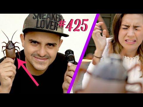 BROMA PESADA A MI ESPOSA CON CUCARACHA ELÉCTRICA *su peor fobia* / #AmorEterno 425