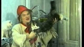 Сюжет про кошек. Передача BCD (2005 г.)