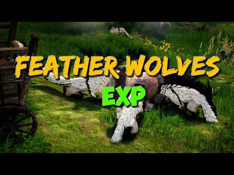 Feather Wolves | EXP + some Money Income | Black Desert Online.