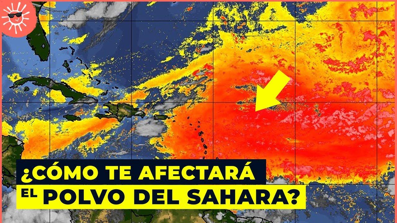 El polvo del Sahara 2020: cómo nos afectará