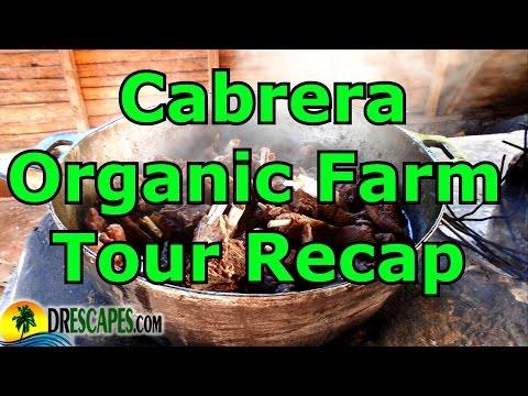 Cabrera Organic FarmTour Recap