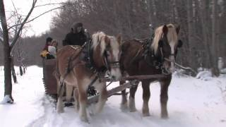 Mayberry's Carriages - Door County WI Travel Show
