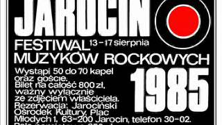 Koncert w Jarocinie Punk Rock Ga Ga defekt muzgó