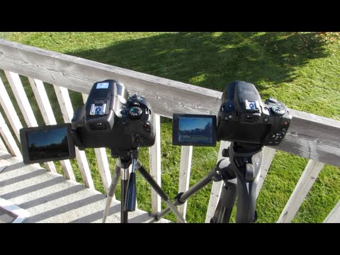 Superzoom CANON SX60/SX50 ZOOM COMPARISON
