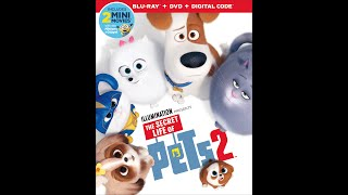 Opening To The Secret Life Of Pets 2 2019 DVD