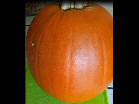 How to prepare pumpkin for freezing