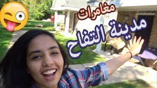 تخيل تسافر عشان تفاحه !!!