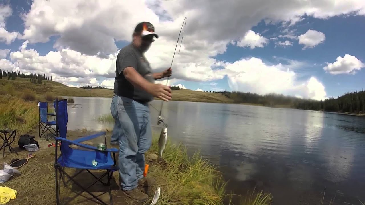 Colorado trout fishing youtube for Colorado trout fishing