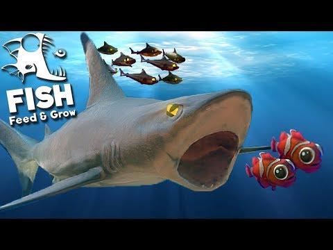 Feed and Grow Fish - Família De Tubarões, Caçando Peixes Filhotes!   (#23) (PT-BR)