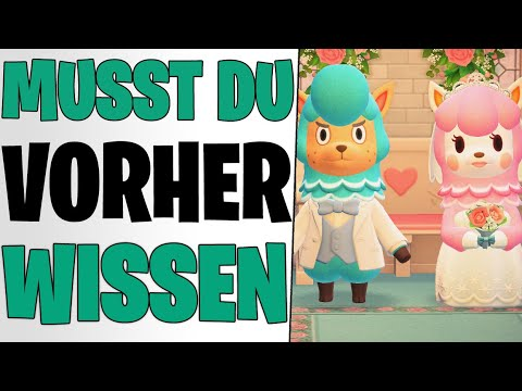Das Musst Du Wissen Wichtige Tipps Hochzeits Season Event Animal Crossing New Horizons Deutsch Youtube