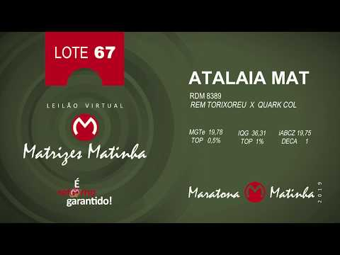 LOTE 67 Matrizes Matinha 2019