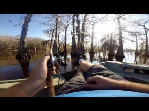 Caddo lake fishing march 11 2014 youtube for Caddo lake fishing report