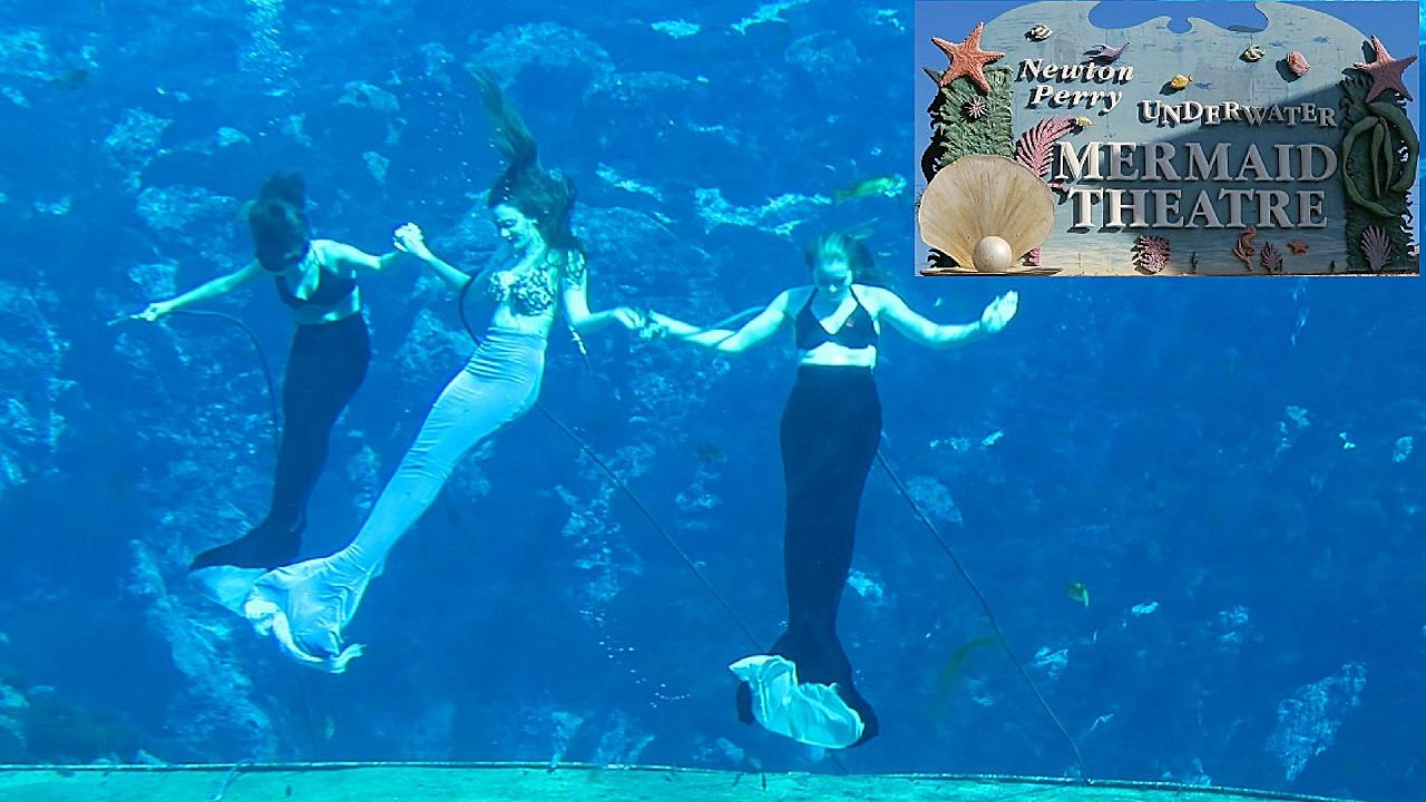 Real Mermaids In Weeki Wachee Florida 2017 - Youtube-7988
