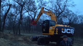 видео Вырубка и корчевания деревьев