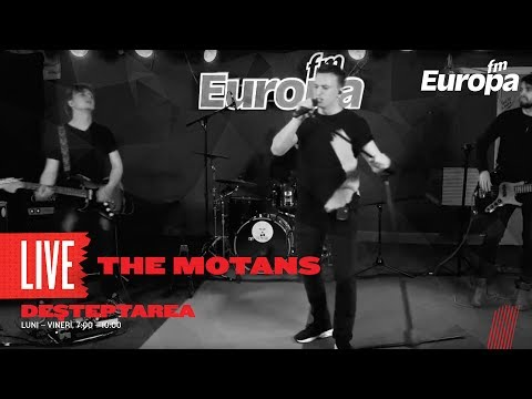 The Motans - 1000 RPM (LIVE)