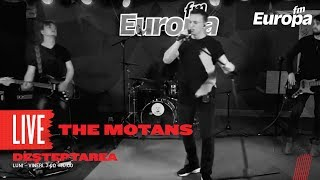 The Motans - 1000 RPM (LIVE)