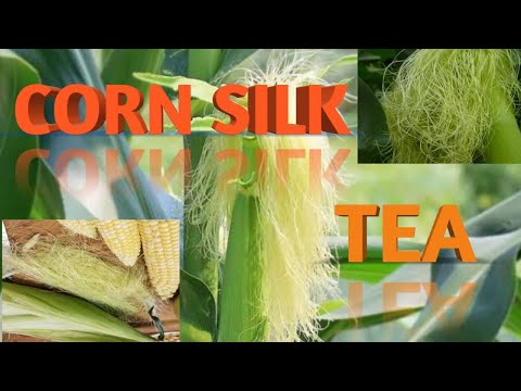 #healthy-#cornsilk-#tea-want-a-tea-with-so-many-healthy-goodness??(-try-it-with-no-worries)