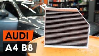 Montavimas Oro filtras, keleivio vieta AUDI A4 (8K2, B8): nemokamas video