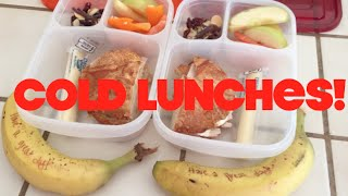 Cold Lunch Ideas!