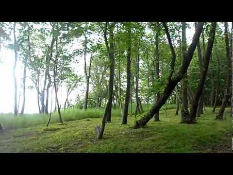 Park in Svetlogorsk,Russia