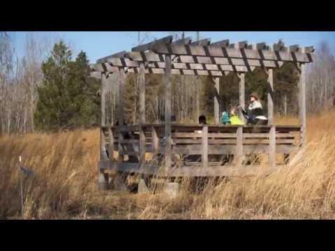 Restoring a native grass meadow at Horton Grove Nature Preserve