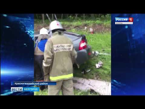 ГТРК Белгород - За сутки в Белгородской области в ДТП погибли пять человек