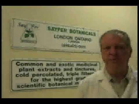 Herbal Medicine Diploma Program, Cold Percolation -  (ICNH-TCM)