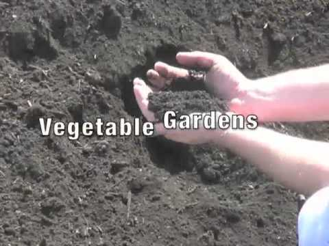 Oh gully where is the soil part 01 funnydog tv for Pictures of different types of soil with their names