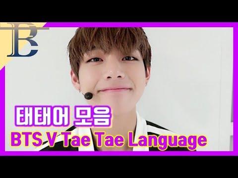 [방탄소년단/뷔] 태태어+귀여운 말투 모음(BTS V Tae Tae Language)