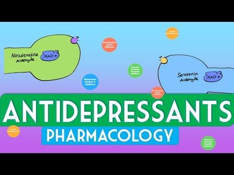 Antidepressants Pharmacology - Soton Brain Hub