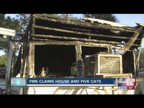 New Port Richey woman just paid off mortgage but had no homeowner's insurance at time of fire