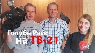 Голубь Райс на ТВ-21 Мурманск