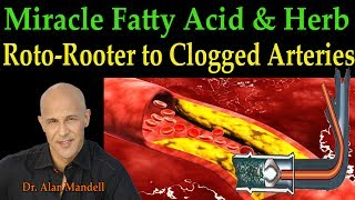 The Roto-Rooter to Clogged Arteries - The Miracle Fatty Acid & Herb (Dr. Alan Mandell, D.C.) thumbnail